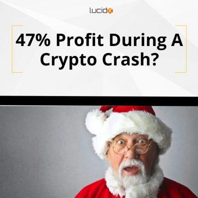 47% Profit During A Crypto Crash?